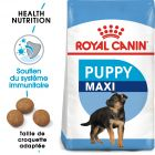 Royal Canin Maxi Puppy / Junior