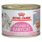 Royal Canin Mother & Babycat Mousse
