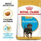 Royal Canin Rottweiler Puppy pour chiot
