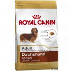Royal Canin Teckel Adult Hondenvoer