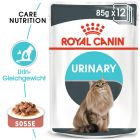 Royal Canin Urinary Care in Soße
