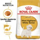 Royal Canin West Highland White Terrier Adult - Hondenvoer