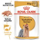 Royal Canin Yorkshire Terrier pour chien