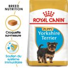 Royal Canin Yorkshire Terrier Puppy pour chiot