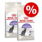 Икономична опаковка: 2 големи опаковки суха храна за котки Royal Canin
