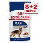 Royal Canin 10 a 12 saquetas em promoção: 2 saquetas grátis!