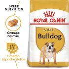 Royal Canin Adult Bulldog 24