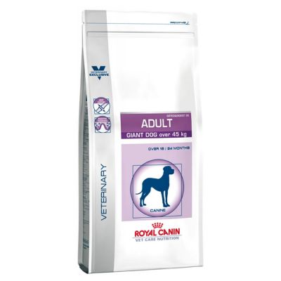 Royal Canin Adult Dog Giant Osteo & Digest 26 Vet Care
