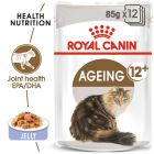 Royal Canin Ageing +12 σε Ζελέ