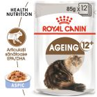 Royal Canin Ageing +12 în gelatină Hrană umedă