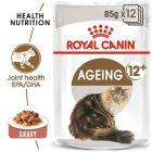 Royal Canin Ageing +12 szószban nedvestáp