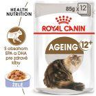 Royal Canin Ageing +12 v želé