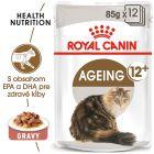 Royal Canin Ageing +12 v omáčke