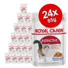 Royal Canin aszpikban & szószban nedvestáp gazdaságos csomag 24 x 85 g