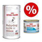 Royal Canin Babydog milk + 12  x 195 g Starter Mousse