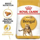Royal Canin Bengal Adult - Kattenvoer