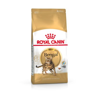 Royal Canin Bengal pour chat