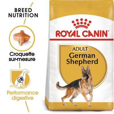 Tarif : Jouet pour chien berger allemand Avis