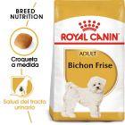 Royal Canin Bichón Frisé Adult