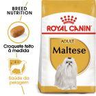 Royal Canin Bichon Maltês Adult