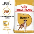 Royal Canin Boxer Adult - Hondenvoer
