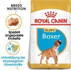 Royal Canin Boxer Junior pour chiot
