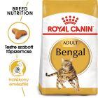 Royal Canin Breed Bengal
