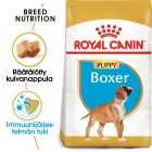 Royal Canin Breed Boxer Puppy