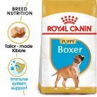 Royal Canin Breed Boxer Puppy Hrană uscată