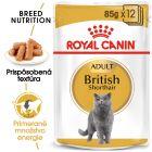 Royal Canin Breed British Shorthair