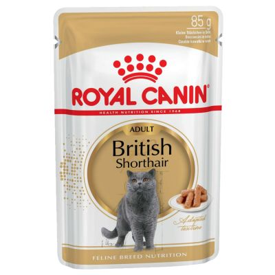 Royal Canin Breed British Shorthair Adult in Salsa