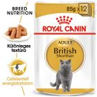 Royal Canin Breed British Shorthair nedvestáp