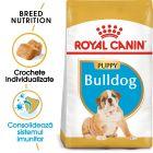Royal Canin Breed Bulldog Puppy Hrană uscată