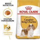 Royal Canin Breed Cavalier King Charles Adult Hrană uscată