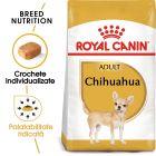 Royal Canin Breed Chihuahua Adult Hrană uscată