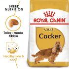 Royal Canin Breed Cocker Adult Hrană uscată