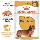 Royal Canin Breed Dachshund