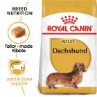 Royal Canin Breed Dachshund Adult Hrană uscată