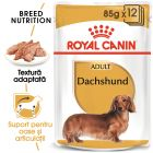 Royal Canin Breed Dachshund Hrană umedă