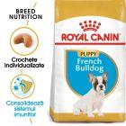 Royal Canin Breed French Bulldog Puppy Hrană uscată