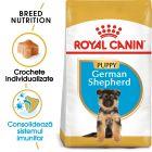 Royal Canin Breed German Shepherd Puppy Hrană uscată