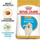 Royal Canin Breed Golden Retriever Puppy Hrană uscată