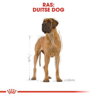 Royal Canin Breed Hondenvoer - Great Dane Adult