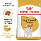 Royal Canin Breed Jack Russell Terrier