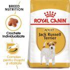Royal Canin Breed Jack Russell Terrier Adult Hrană uscată