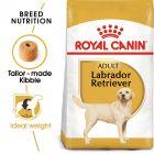 Royal Canin Breed Labrador Retriever Adult Hrană uscată