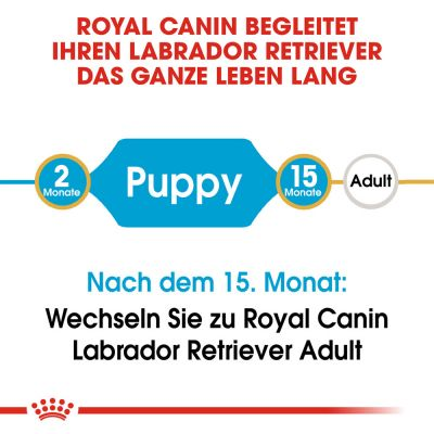 Royal Canin Breed Labrador Retriever Puppy