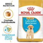 Royal Canin Breed Labrador Retriever Puppy Hrană uscată