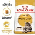 Royal Canin Breed Maine Coon Adult