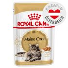 Royal Canin Breed Maine Coon Adult in Soße
